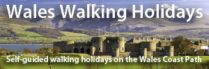 waleswalkingholidays.com