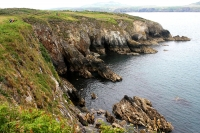 Cliffs above Ramsey Sound, Pembrokeshire