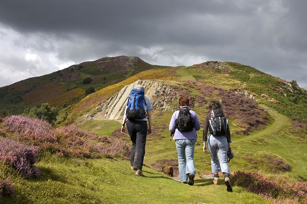On the upland Wales Coast Path on Conwy Mountain
