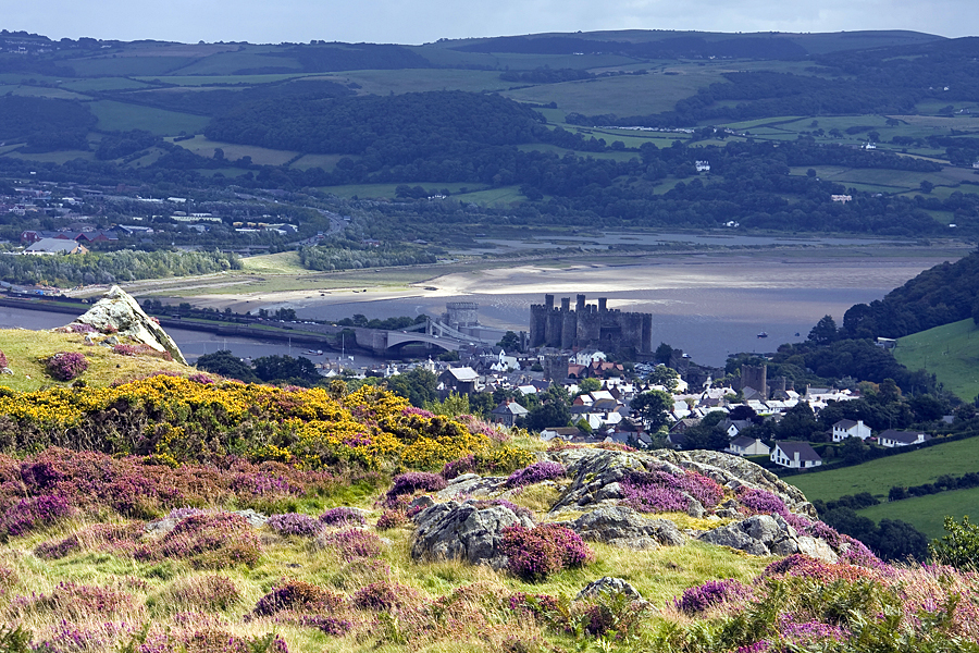 Conwy Castle from Conwy Mountain