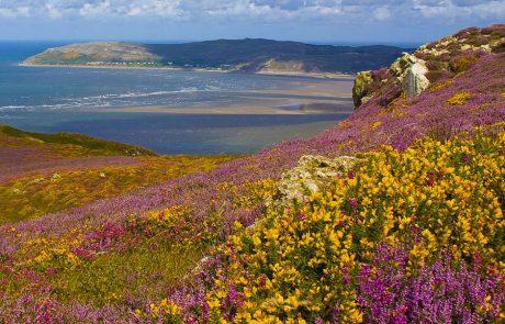 Wales Coast Path: Conwy Mountain, Gwynedd