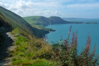 Dramatic cliff path at Cwmtydu, on the Wales Coast Path