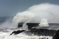 Huge storm waves explode against the breakwater at Holyhead