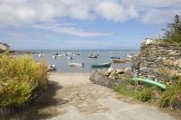 Newport, Pembrokeshire